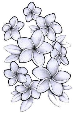 Plumeria tattoo outline