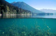 Birkenhead Lake Provincial Park - BC Parks