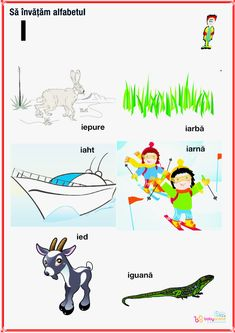 Oracle Cards, Alphabet, Homeschool, Letters, Logos, Kids, Rome, Bebe, Young Children