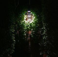 Giardino Verticale  viale Majno, 20 - Milano