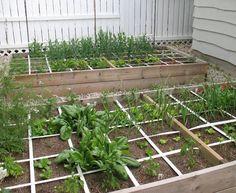 Small Garden Ideas: Square Foot Veggie Gardening — Eco Balance ... Small Space Gardening, Small Gardens, Gardening Tips, Outdoor Gardens, Square Foot Gardening, Raised Garden Beds, Raised Bed, Garden Projects, Garden Ideas