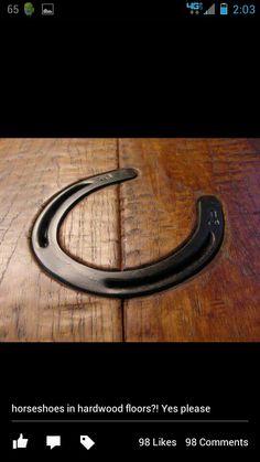 Horse shoes in hardwood floor