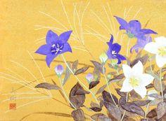 桔梗  2010年-33-野地美樹子