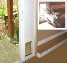 How To Build A Patio Pet Door