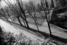 Direzione mura. Baluardo San Giacomo sulle mura venete di Bergamo - foto di Massimo Gilardi --- Questa fotografia partecipa al Concorso Fotografico Bergamo, per votarla condividila dalla pagina Facebook http://on.fb.me/1bfzk4E (la trovi tra i post di altri) e carica anche tu le tue foto su www.orobie.it per partecipare al concorso!