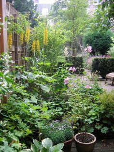 Gardening In The City Beautiful historical garden in the city (Amsterdam) - Saskia Albrecht Historische Tuinen