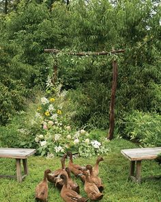 """For a rustic ceremony arch that looks as if it sprouted up on its own, Love starts with a simple wooden frame and adds armfuls of grasses, ferns, heuchera, lamb's ear, dahlias, lisianthus, rudbeckia, hydrangeas, clematis, and tomato vines. Building a naturally asymmetrical look, she places potted greenery along the ground to serve as a foundation, then secures other flowers and foliage to the arch with a bit of wire. """"I'm sort of the queen of 'organic'"""