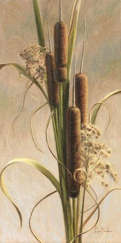 """Velvety Cattails"", oil on canvas paper, by Lucie Bilodeau. Available as prints. Watercolor Images, Watercolor Flowers, Watercolor Paintings, Flower Paintings, Oil Paintings, Watercolors, Folk Art Flowers, Flower Art, Botanical Tattoo"