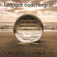 Business coaching - Dobrai F. Business Coach, Wine Glass, Coaching, Tableware, Training, Dinnerware, Tablewares, Dishes, Place Settings