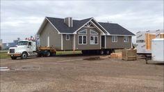 ONYX HOUSE MOVE - 1709 SQ.FT.