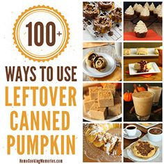 Canned pumpkin makes lots of great things. Sometimes it is hard to use it all in one recipe, so here are 100 ways to use up that leftover canned pumpkin. #pumpkin #recipes