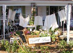 trellis clothesline