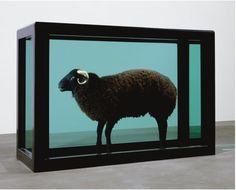 damien-hirst-the-black-sheep