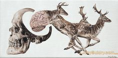 Consciousness by artist, Amy Guidry. Acrylic on canvas, 12inch by 6 inch.  #art #painting #surrealism #surreal #surrealist #nature #deer #skull #brain #animals #fineart #originalart
