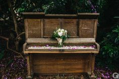 Iscoyd Park Wedding Photography by Rachel Ryan Photography Formal Gardens, Park Weddings, Wedding Venues, Wedding Photography, Beautiful, Wedding Reception Venues, Wedding Places, Wedding Photos, Wedding Pictures