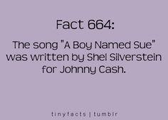 Who knew Shel Silverstein wrote lyrics?