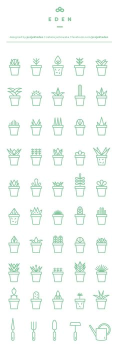 Succulent icon set | free download on Behance