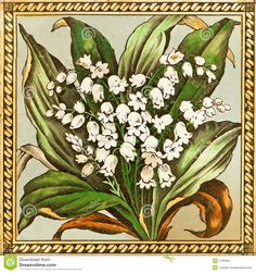 Lily Of The Valley Art