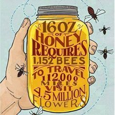 Believe it!  #honeybees #honey #books #susanwiggs #TheBeekeepersBall