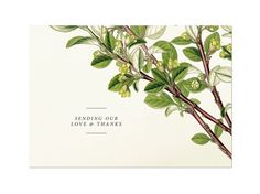 Flora Thank You Card Vintage Botanical Wedding invitation by HairpinPress, $1.00