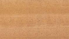 Ceiba Holzstruktur