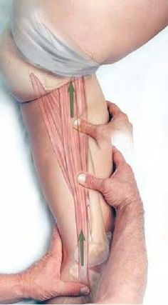 Clinical Massage Therapy. Very cool site.for therapy techniques! by ana