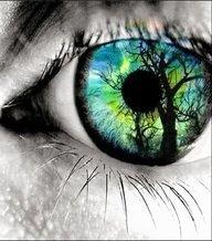 A natureza torna-se perfeita quando vista diante de olhos que respeitam e sabem admirar. Observadas por outros olhos, ameaçadores, se converte repugnante e vai se extinguindo com o percorrer dos séculos. Patrícia Garbuio