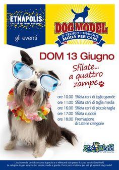 Dog Model (III Edizione). Sfilate.... a quattro zampe. 3° Trofeo Etnapolis Moda per cani.