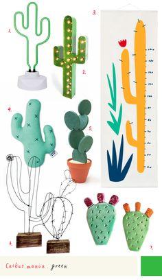cactus growth chart