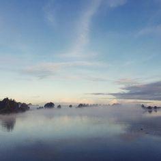 When the mist slowly resolves and you get a feeling of where you might be going. #mist #morningfog #ijsselstein #landscape #landschap #netherlands #nederland #fog - (c) http://ift.tt/2dDNc3r