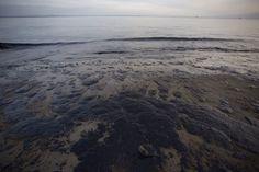 Si sta profilando come un vero e proprio disastro ambientale, in California, la rottura di un oleodotto. Il guasto ha portato alla fuoriuscita di petrolio che si è riversata in mare creando una chiazza che ha investito prima la spiaggia di Santa Barbara e ora si sta spostando verso la Refugio