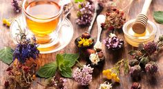 Chunyang Tea want's to drink zero caffeine and less time consumming tea .try our Herbal Tea and Black Milk Tea and many more best offers available at Toronto Best Herbal Tea, Best Tea, Herbal Teas, Weight Loss Tea, Weight Loss Drinks, Herbal Remedies, Natural Remedies, Salud Natural, Chamomile Tea