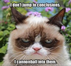 I don't jump to conclusions, I cannonball into them.