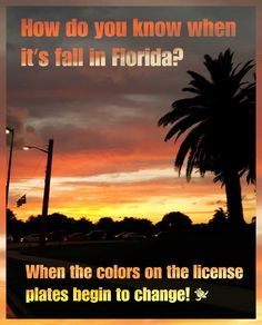 How do you know when its fall in Florida? When the colors on the license plates begin to change! - http://www.waterfront-properties.com/jupiteradmiralscove.php