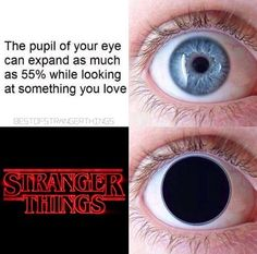 When I watch stranger things. Watch Stranger Things, Stranger Things Have Happened, Stranger Things Aesthetic, Stranger Things Netflix, Saints Memes, Should I Stay, Stranger Danger, Funny Relatable Memes, Best Shows Ever