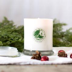 Magnolia Christmas Candle Chip & Joanna Gaines