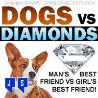 ►► DOGS vs DIAMONDS ►► Jewelry Secrets