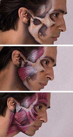 Miguel Jaw Anatomy by Battledress on DeviantArt
