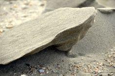 Kadootjes op het strand