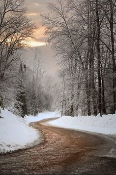 A Winter road with snow and trees Winter Szenen, I Love Winter, Winter Sunset, Winter Magic, Winter Christmas, Christmas Nails, Winter Trees, Winter Nails, Fall Nails