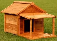 Dog Houses To Build Yourself How To Build A Great Dog
