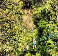 Canopy con amigos, un buen momento, en #PUertoVallarta  www.graylinevallarta.com