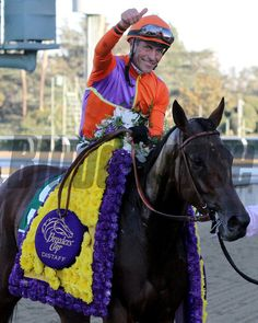 Gary Stevens celebrates aboard Beholder after winning the Breeders' Cup Distaff at Santa Anita Park on November 1, 2013. Photo By: Chad B. Harmon
