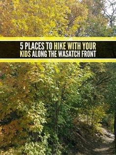 5 places to hike with your kids along the Wasatch Front