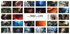 The Tree of Life is a 2011 American drama film with experimental elements written and directed by Terrence Malick and starring Sean Penn, Brad Pitt, and Jessica Chastain. Malick's film chronicles the origins and meaning of life by way of a middle-aged man's childhood memories of his family living in 1950s Texas, interspersed with imagery of the origins of the universe and the inception of life on Earth.