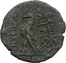 Antiochos VIII (Grypos) Seleukid Kingdom 121BC Ancient Greek Coin Eagle i56500