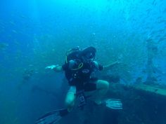 Dive Instructor Dannish having fun on their wreck dive last week! Volunteers got to explore a ship wreck 30 meters under water spotting lion fish, shark suckers and massive schools of other fish. Diving School, Ship Wreck, Marine Ecosystem, Diving Course, Volunteer Programs, Marine Conservation, Padi Diving, Suckers