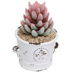 French Country Rustic White Ceramic Succulent Planter Flower Pot / Decorative Accessory Jar - MyGift® MyGift http://www.amazon.com/dp/B00X0K3U6S/ref=cm_sw_r_pi_dp_mUDTvb1SY4WN8