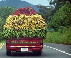 """Loaded truck / Random art"". A colorful truck on the road in Panama, Central America. Above, in the middle, and below, are ranbutans, bananas (platanos), and plantains. Check out the order of the colors of the letters forming  ""Mitsubishi"" ~ they match the fruit colors ~  // by jabaezam"