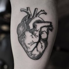 Image result for anatomical heart tattoo